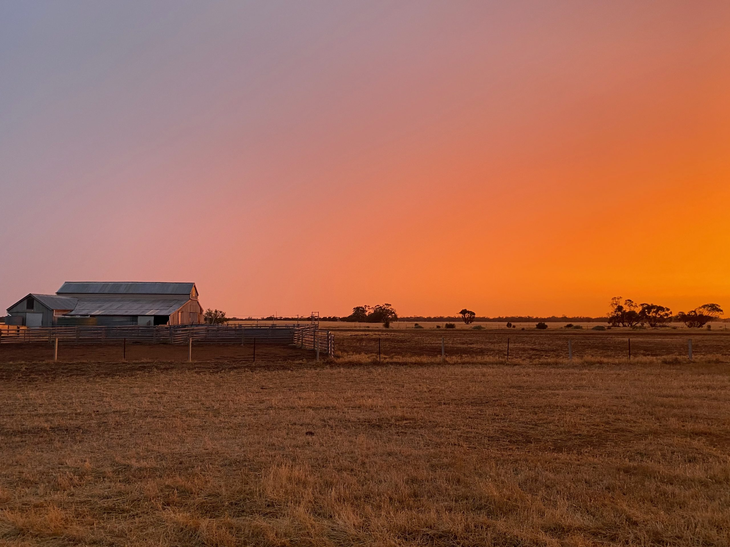Budget a missed opportunity for rural Australians