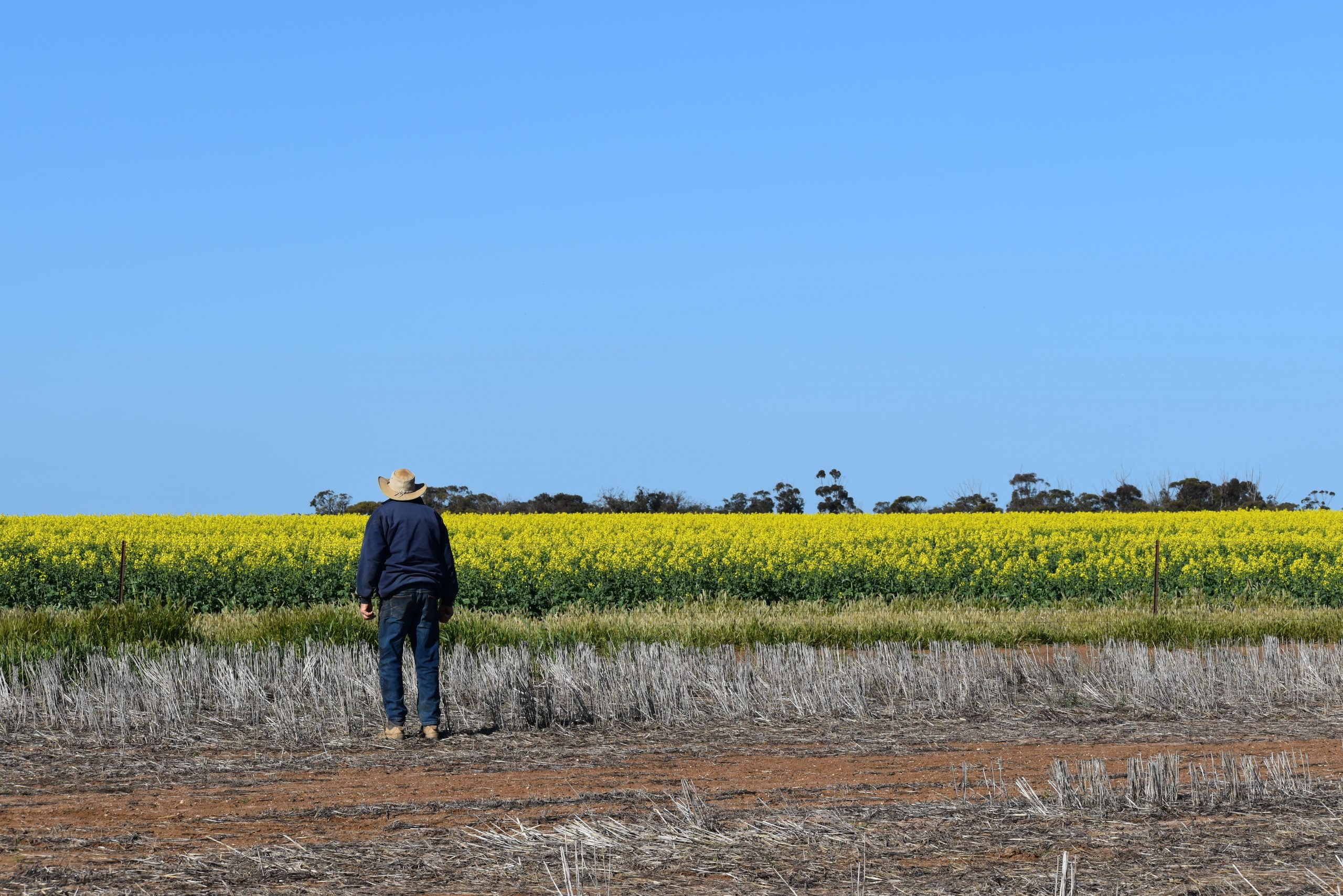 Australian farmers hurt while the gas industry profits