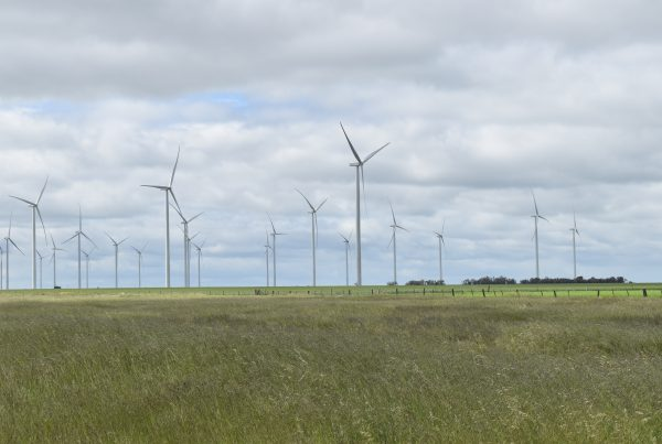 Murra Warra wind farm