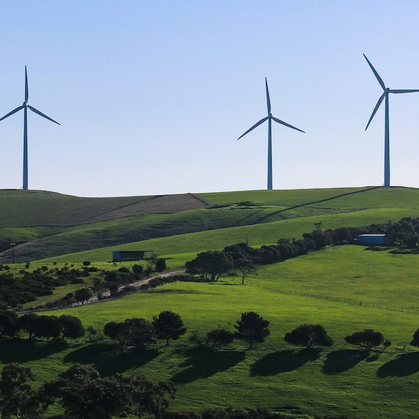 How to harness the renewable energy boom